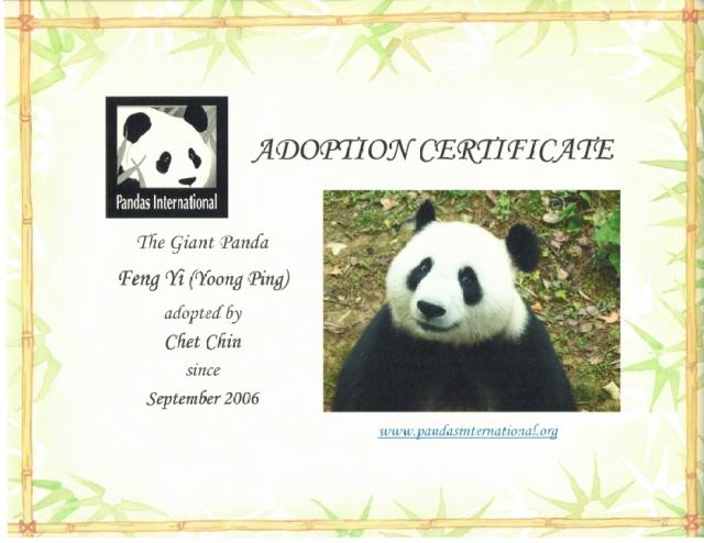 feng_yi-adoption_cert-jul2013-1