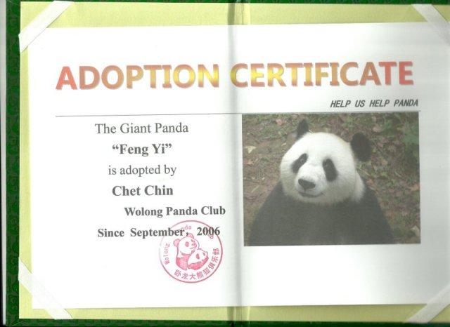 adopt_cert-panda_club-1-2014